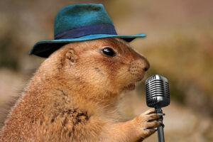 Unusual singer